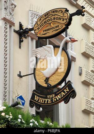 UK, England, London, The White Swan, pub sign, - Stock Image