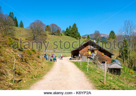 Cabin and pick-nick area near Nonnenmattweiher Lake in the Southern Black Forest (Südschwarzwald) region, Baden-Württemberg, Germany - Stock Image