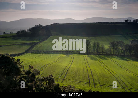 A view of farmland in front of Cliff Rigg, an old disused quarry on the northern edge of the North York Moors National - Stock Image
