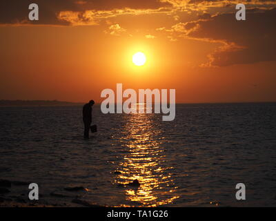 Sheerness, Kent, UK. 21st May, 2019. UK Weather: a bait digger at sunset in Sheerness in Kent.  Credit: James Bell/Alamy Live News - Stock Image
