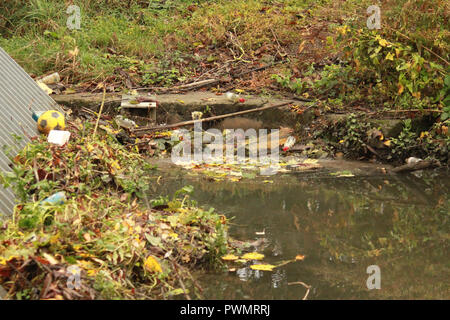 litter in a stream - Stock Image