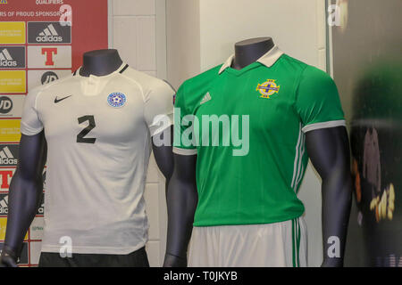 Windsor Park, Belfast, Northern Ireland. 20 March 2019. Northern Ireland press conference in Belfast. Northern Ireland play Estonia at Windsor Park tomorrow  evening in their opening UEFA EURO 2020 Qualifying game. Credit: David Hunter/Alamy Live News. - Stock Image