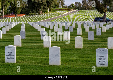 Los Angees, California USA 26 May 2018 Boy Scouts place flags on Veteran's graves to honor them on Memorial Day. Credit: Chester Brown/Alamy Live News - Stock Image