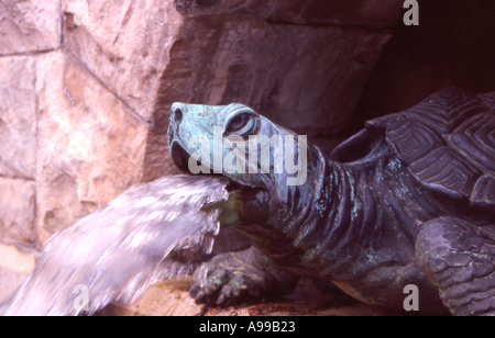 Biltmore Estates Turtle water Feature - Stock Image