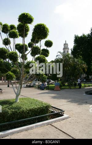 Plaza Grande, Merida, Yucatan Peninsular, Mexico - Stock Image