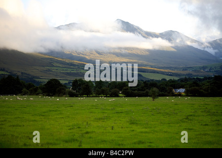 MacGillycuddy's Reeks, Killarney National Park, Iveragh Peninsula, County Kerry, Munster, Republic of Ireland - Stock Image