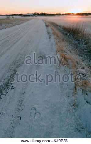 Footsteps in the snow by a horse and sunset. - Stock Image