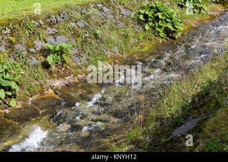 Mountain river named Bystra stream flows through a riverbed whose banks are reinforced with large stones. It is - Stock Image