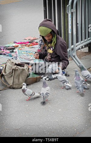 At Union Square Park, an artist takes time from his drawings to hand feed pigeons. - Stock Image