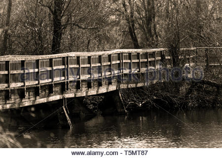 Bridge to the bird island - Stock Image