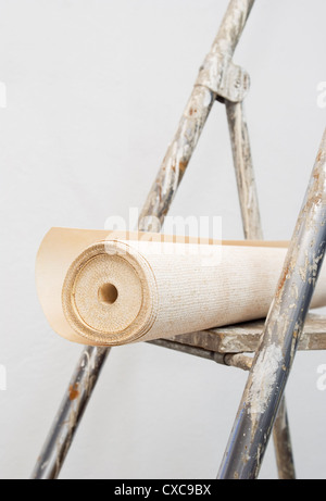 Wallpaper roll on ladder - Stock Image