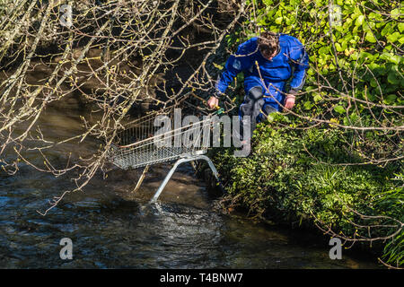 People voluntarily taking part in  river clean , picking up discarded shopping trollies   and other types of rubbish, organised by Aberystwyth Beach Buddies / Gwerin y Glannau on Aberystwyt h along the river Rheidol in Aberystwyth, Wales UK - Stock Image