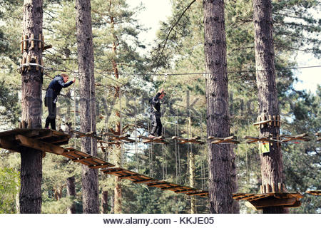 high ropes - Stock Image