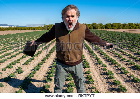 A farmer with a tablet in one hand and a mobile phone in the other poses in his field with an attitude of success and strength. - Stock Image