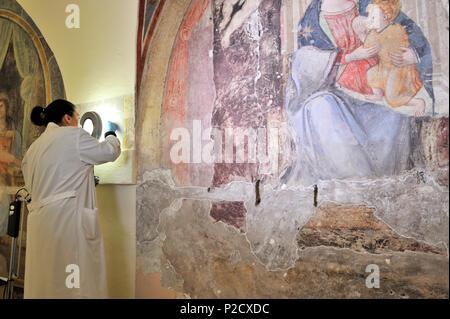 restorations of the frescos (16th century), on the right Madonna del Latte (14th century) in the church of Santa Marta al Collegio Romano, Rome, Italy - Stock Image