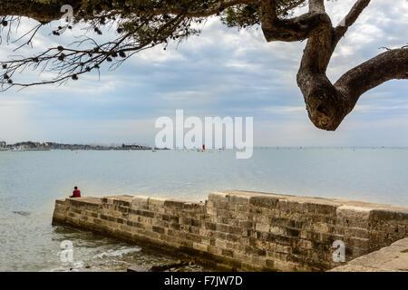 La Rochelle, entrance of the harbor Charente Maritime, France - Stock Image