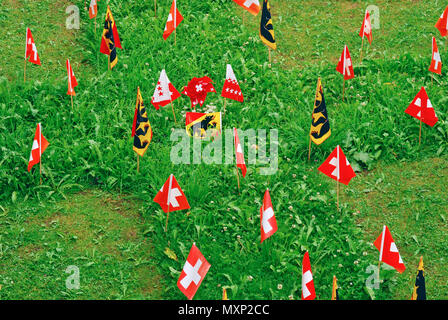 small Swiss flags on lawn - Stock Image