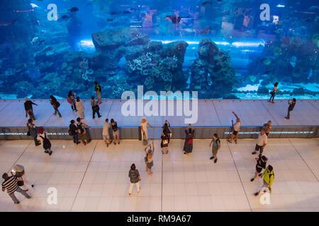 Dubai, United Arab Emirates - September 9, 2018: The Dubai Aquarium in Dubai, United Arab Emirates, showcases more than 300 species of marine animals, - Stock Image