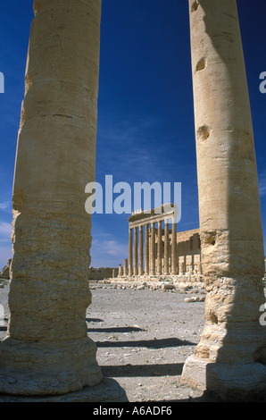 Syria Palmyra Temple of Bal - Stock Image