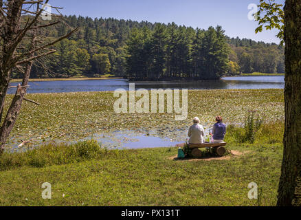 BLOWING ROCK, NC, USA-8/23/18: Two senior women sit on a log bench facing Bass Lake, with water lilies over much of the lake. - Stock Image