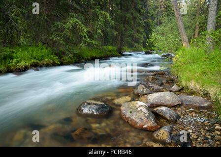 Jonas Creek near Jonas Creek Campground, Jasper National Park, Alberta, Canada - Stock Image