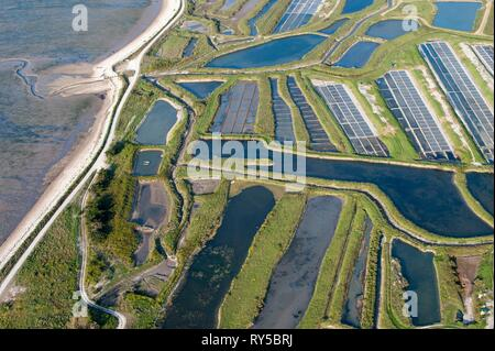 France, Charente Maritime, Ile de Re, Ars en Re, labeled the Most Beautiful Villages of France, salt marshes (aerial view) - Stock Image