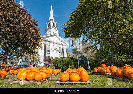 Pumpkin Patch pumpkins for sale at the First Congregational Church United Church of Christ Cape Cod Chatham Massachusetts - Stock Image