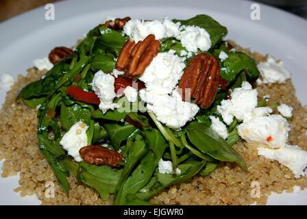 Vegetarian quinoa salad goat cheese arugula grilled red peppers toasted pecans - Stock Image