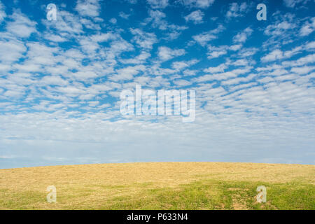 Cut hay field with blue summer sky with fluffy clouds. - Stock Image