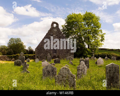 Old graveyard and church remains in County Tipperary.It is a frequent view in rural Ireland. - Stock Image