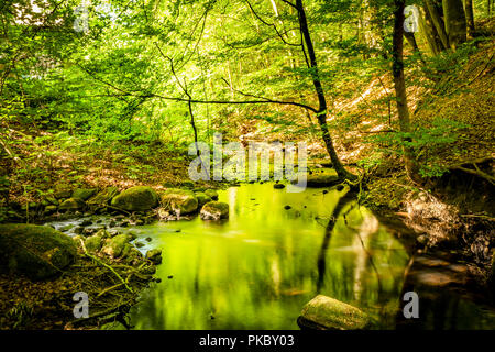 Green forest in the summer reflecting colors in a river with rocks on the shore - Stock Image