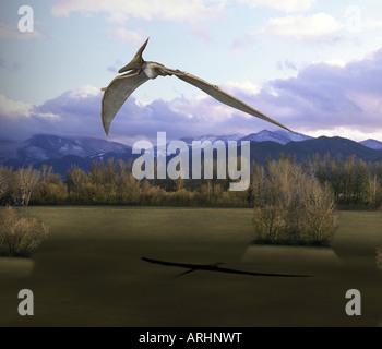 dinosaur Pteranodon - Stock Image