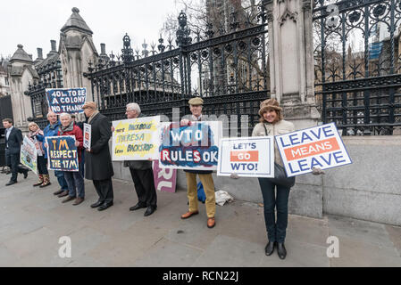 London, UK. 15th January 2019.  Leave Means Leave protesters by the gates to Parliament. Groups against leaving the EU, including SODEM, Movement for Justice and In Limbo and Brexiteers Leave Means Leave and others protest opposite Parliament as Theresa May's Brexit deal was being debated.  While the two groups mainly kept apart, a small group, some in yellow jackets came to shout insults at pro-EU campaigners, while police tried to keep the two groups separate. Credit: Peter Marshall/Alamy Live News - Stock Image