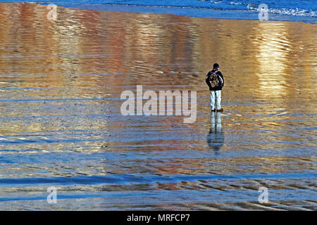 Brilliant afternoon sunshine reflects the surrounding colours around a single walker on wet sand on Scarborough's South Bay beach. - Stock Image