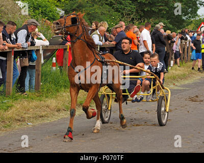 man and two boys in horse-drawn trap galloping on the hill Appleby-in Westmorland at the crowded annual Appleby Horsefair, Cumbria, England, UK, 8 June, 2018. racing trap at Appleby Credit: Steve Holroyd/Alamy Live News - Stock Image