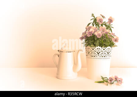 Purple, blue and lilac pansy flowers in a beautiful pot with an enameled jug on white background, copy space, vintage filter effect - Stock Image