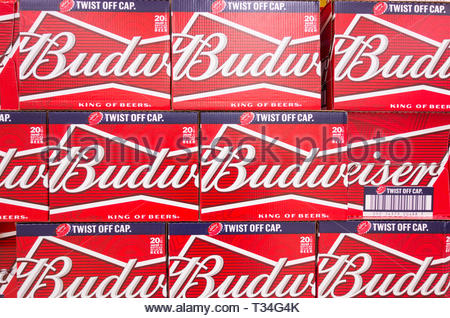 Budweiser beer packs on a supermaket shelf in the UK - Stock Image