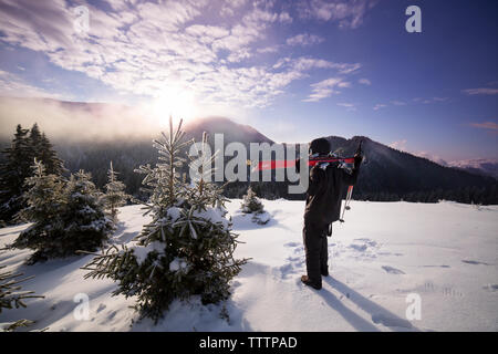 Rear view of skier on snowy mountain against sky - Stock Image
