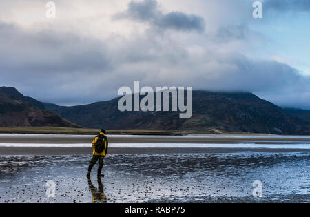 Maghera, County Donegal, Ireland. 3rd January 2019. A beachcomber looks towards Slievetooey Mountain or Sliabh Tuaidh in the Irish language which stands 510 metres above sea level and is often topped with fog, sea-mist or low clouds. Credit: Richard Wayman/Alamy Live News - Stock Image