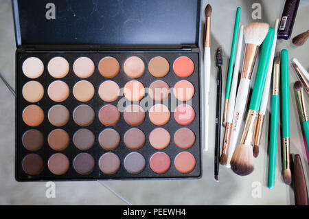 Makeup Pallet and brushes - Stock Image