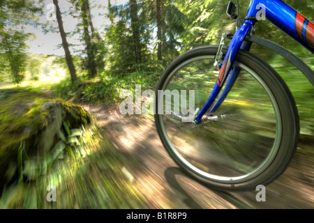 Off-road biking - Stock Image