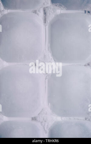 Detail of ice cubes in a tray - Stock Image