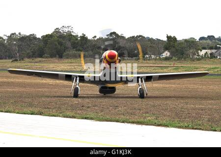 Stewart S-51D Mustang 70% scale replica plane at Tyabb airshow, Australia, 2016. Front view, propeller spinning. - Stock Image