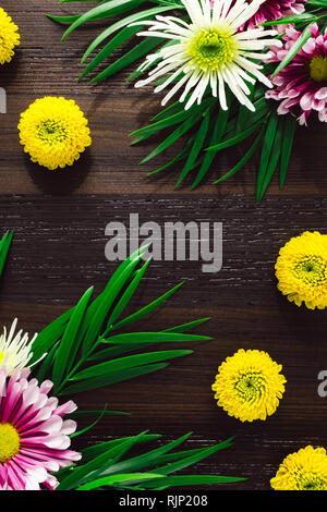 Chrysanthemums and Mixed Foliage with Space for Copy - Stock Image
