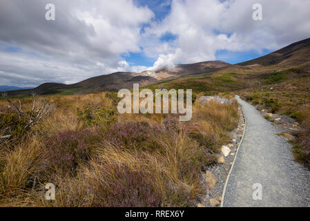 The landscape of the Tongariro walking route, New Zealand. - Stock Image