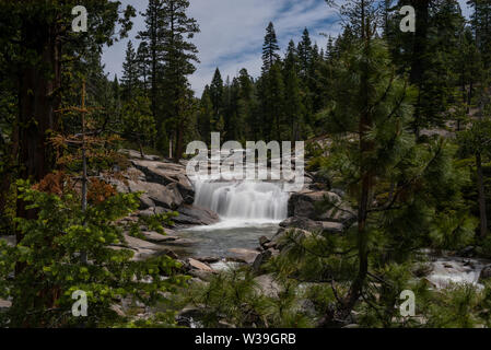 Lower Bassi Falls at the Eldorado National Forest, California, USA, in the beginning of the summer of 2019, llong exposure, featuring the coniferous t - Stock Image