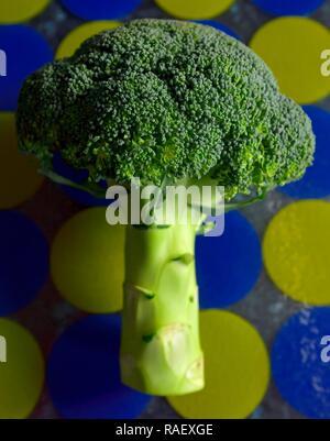broccoli - Stock Image