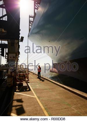 Dock worker beside cargo ship at Port of Felixstowe, England - Stock Image