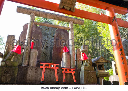 Statues of foxes with red bibs to expellee demons and illness, foxes are regarded as a messenger and they are often found at Shinto shrines dedicated  - Stock Image