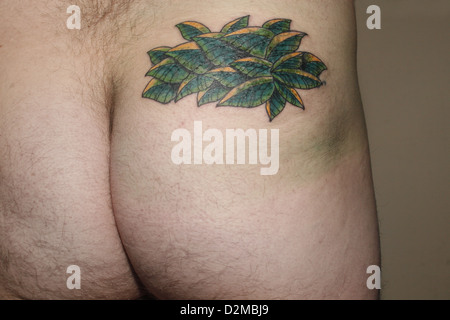 leaf tattoo on male right buttock - Stock Image